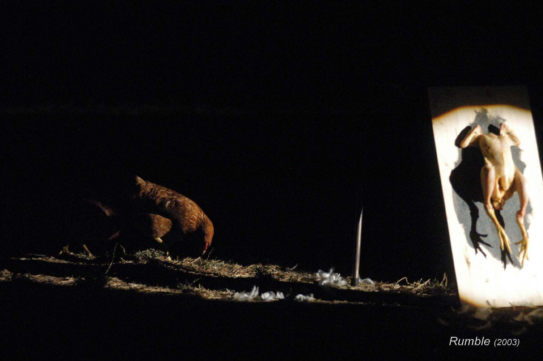 Rumble;2003;humanbeings (20)